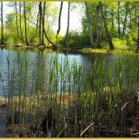Mostki - kanał, Зары