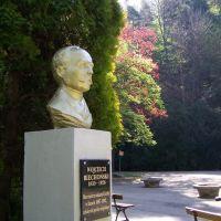 Parki Miejski pomnik Wojciecha Biechońskiego, Горлице