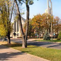 Kościół Św Maksymiliana, Освецим