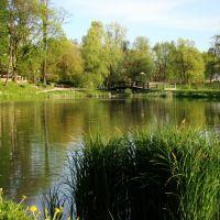 Park w Skawinie, Скавина