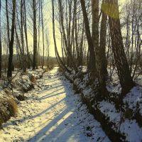 Zima w rezerwacie, Воломин
