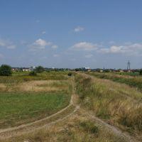Pole, łąka... [2013.07.26], Гроджиск-Мазовецки