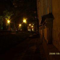 Noc w parku, Козенице