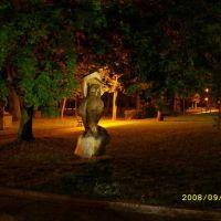Sowa w parku w nocy, Козенице