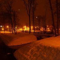 Zima w parku nocą, Козенице