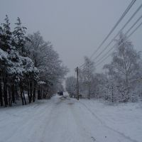 zima2, Легионово