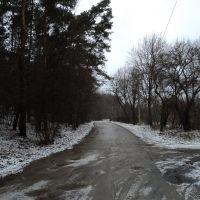 ulica Prymasowska, Легионово