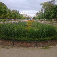 w mławskim parku, Млава