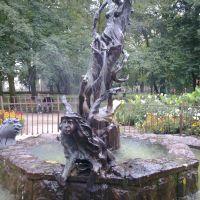 fontanna, Млава