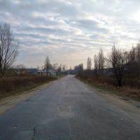 ul. Okólna - południe/south, Пионки