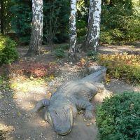 Bardzo groźny Krokodyl, Плоцк
