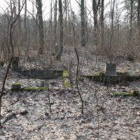 Cmentarz ewangelicko-augsburski /  Evangelical-Augsburg Cemetery - Marki, Пьястов