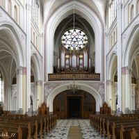 Radom, Katedra Opieki Najświętszej Marii Panny - organy, Радом