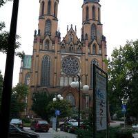 Radom - Katedra, Радом