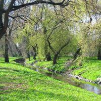 Radom, wiosna w Starym Ogrodzie, Радом