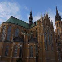 Radom - Katedra p.w.Opieki NMP, Радом