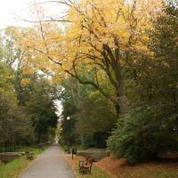 Jesień w Parku, Седльце