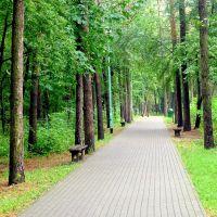 jeszcze zielono,ale jesień zagląda do parku, Мелец