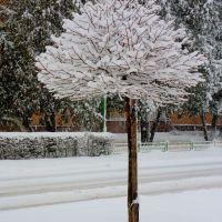 tylko w zimie takie widoki..., Мелец