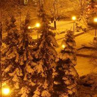 Fontanna zimą, Тарнобржег