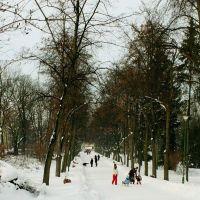 Zima w parku Branickich, bulwary Kosciakowskiego, Белосток