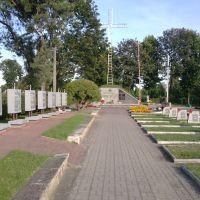 aleja na cmentarzu, Бельск Подласки
