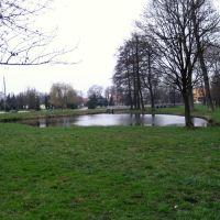 Bielsk Podlaski - staw w parku (pond), Бельск Подласки