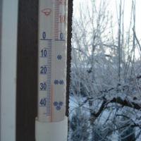 Winter 2008/2009, Граево
