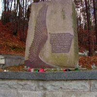 Cmentarz Rosyjskich Żołnierzy, Вейхерово