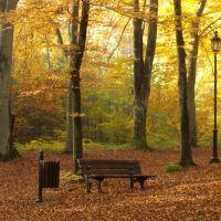 Jesiennie..., Вейхерово