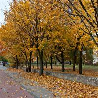 Autumn in Wejherowo, Вейхерово