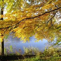 Jesień 2007 - Jezioro Kapliczne, Косцержина