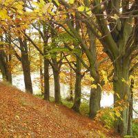 Jesień - Jezioro Kapliczne, Косцержина