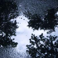 Отражение / Reflection, Сопот