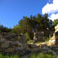 Opuszczone siedlisko, Старогард-Гданьски