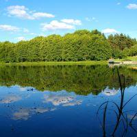 Jezioro Gałęźne, Старогард-Гданьски