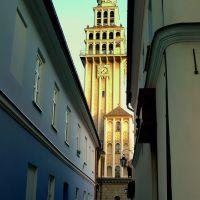 Bielsko-Biała katedra św. Mikołaja, Белско-Бяла