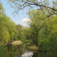 Park miejski wiosna (sb), Бытом