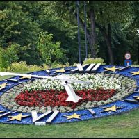 GLIWICE. To nasz kwiatowy zegar na Skwerze Doncaster/This is our floral clock in Doncaster Square, Гливице