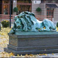 """GLIWICE. Jesienny """"Lew Śpiący""""/""""Schlafender Löwe"""" (Theodor Erdmann Kalide), Гливице"""