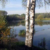 Staw Rzęsa - Siemianowice Śląskie, Даброваа-Горница