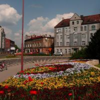 Kwietnik przy ul. Staszica (flower garden at Staszica st.), Даброваа-Горница