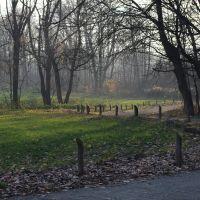 Siemianowice Śl. Bażantarnia, Даброваа-Горница