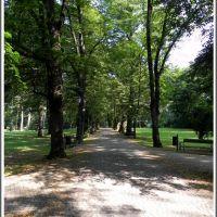 Żywiecki Park - aleja główna, Живец