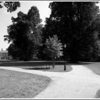 Żywiecki Park, Живец