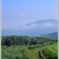 Żywiec - okolice Jeziora Żywieckiego, Живец