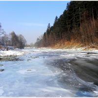 Soła skuta lodem, Живец