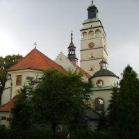 Katedra Narodzenia NMP, Живец