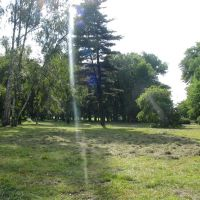 Pyskowice park, Пысковице