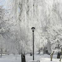 ...waiting for spring ...., Пысковице